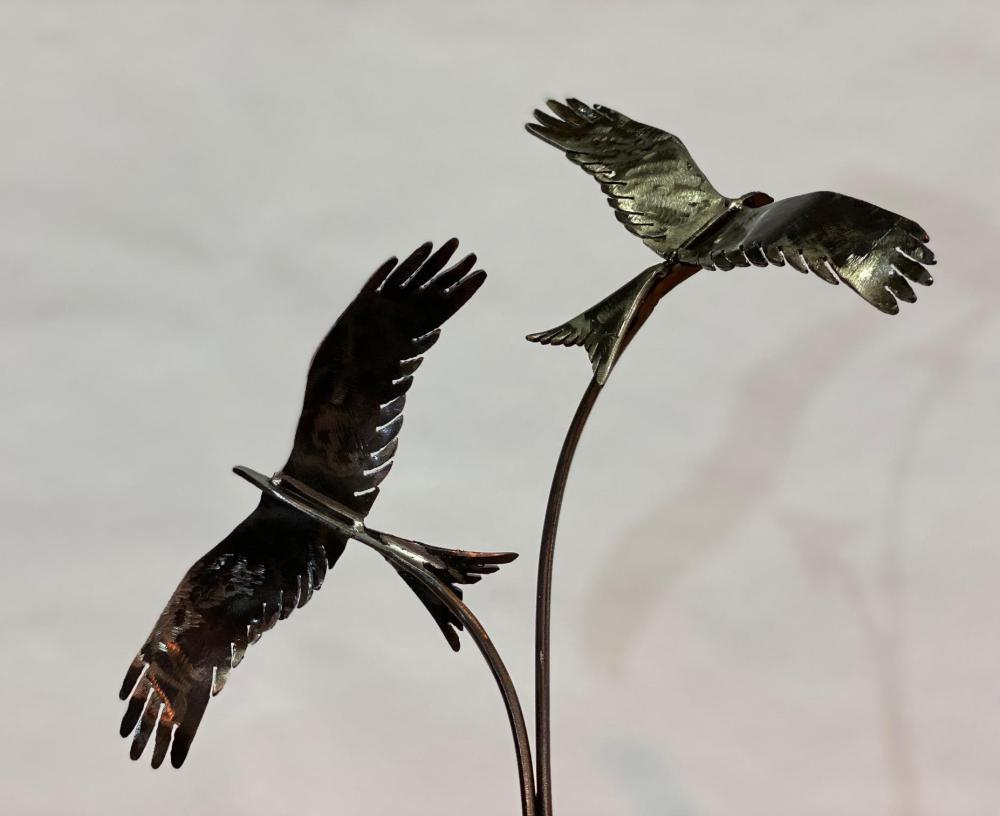 black rustic two birds flying design