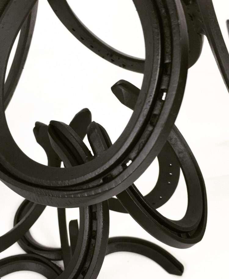 Details of Horseshoes