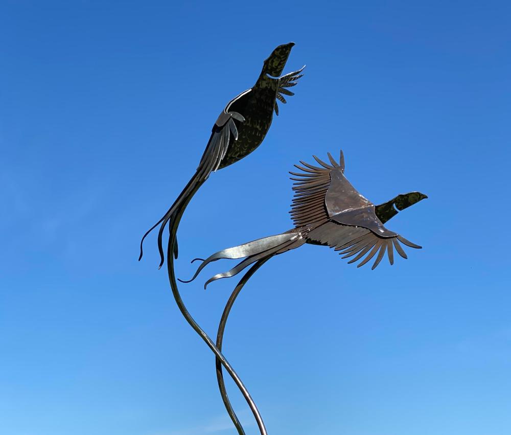 Birds On A Sunny Day