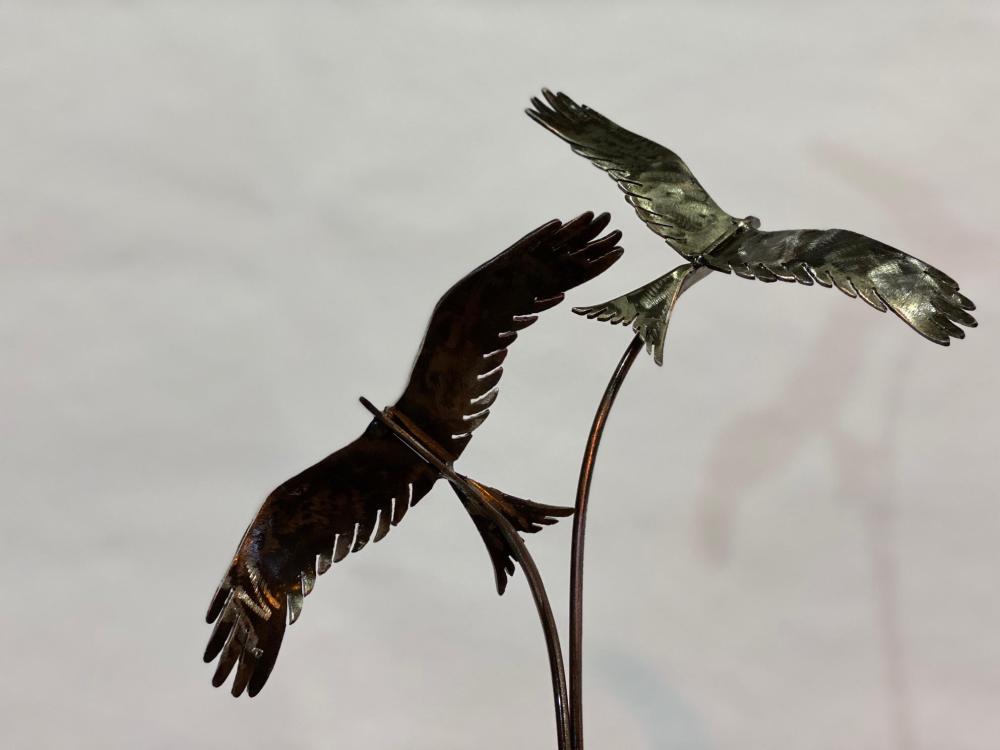 black birds design