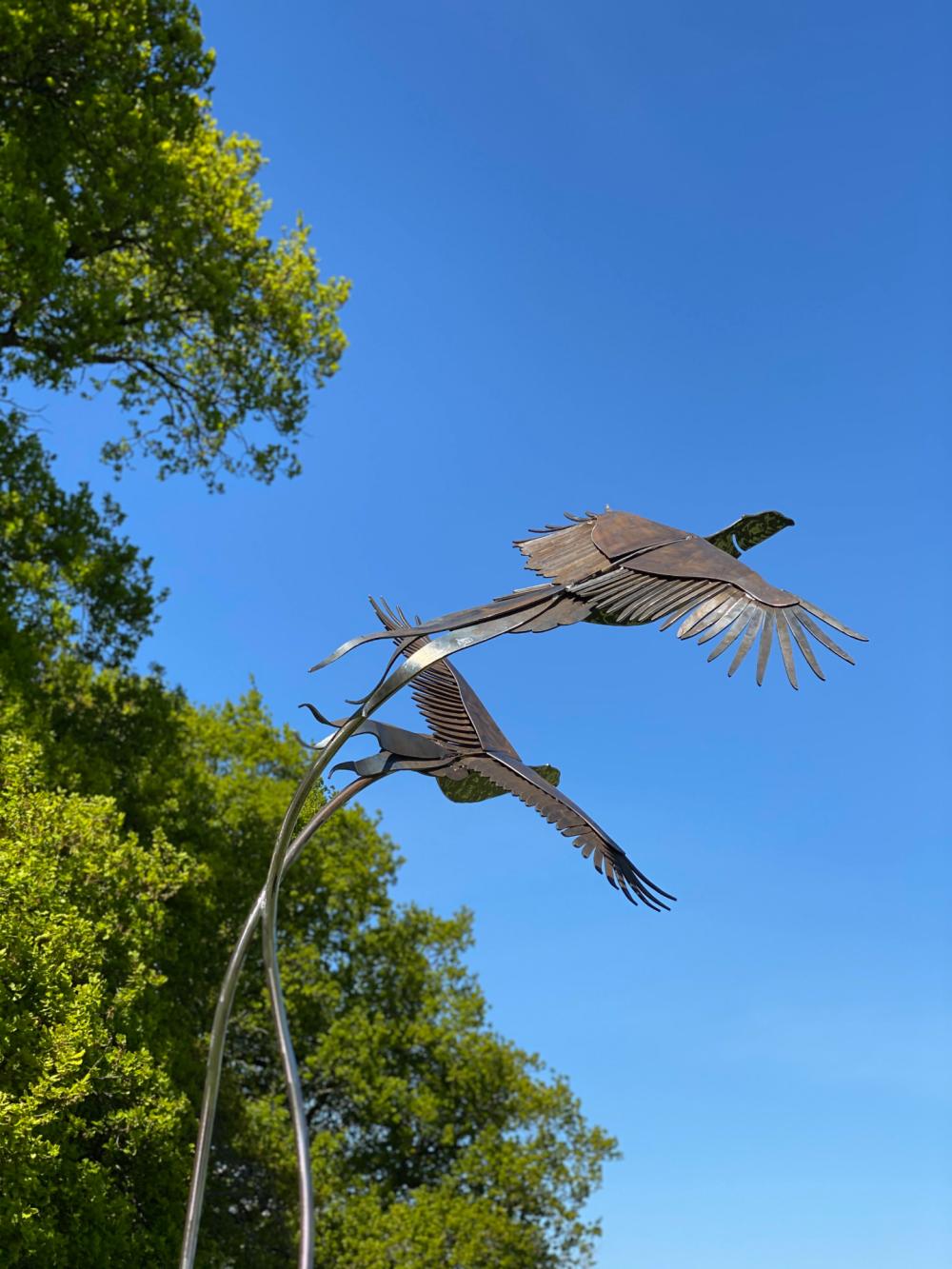 Birds Flying Design
