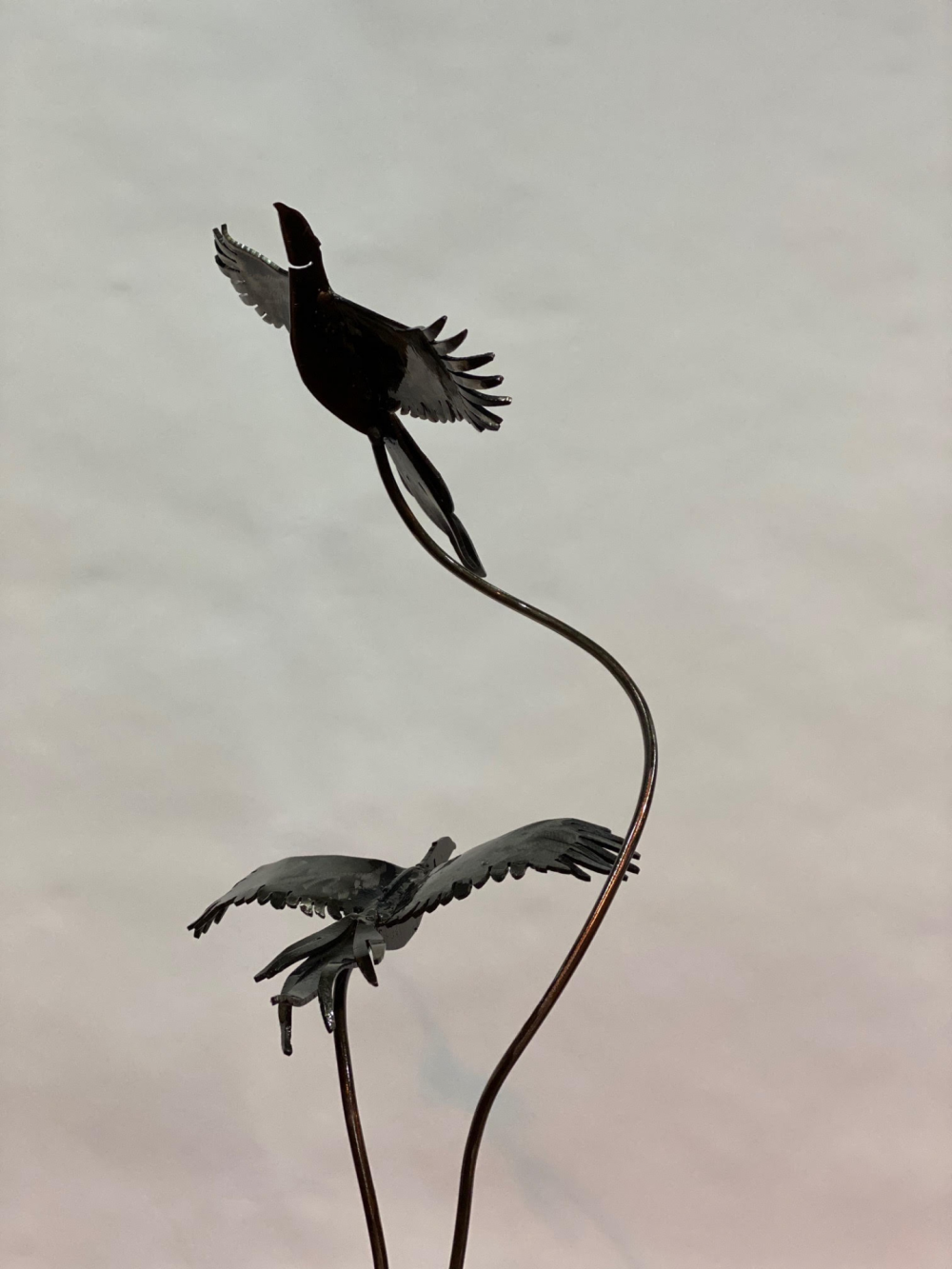 Two Birds Flying With Cloudy Background
