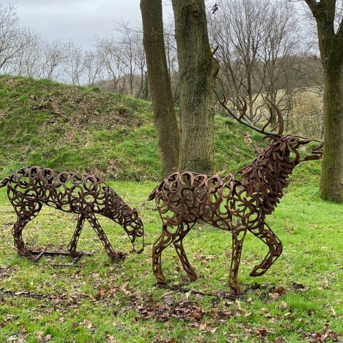 Stag And Doe Roaming