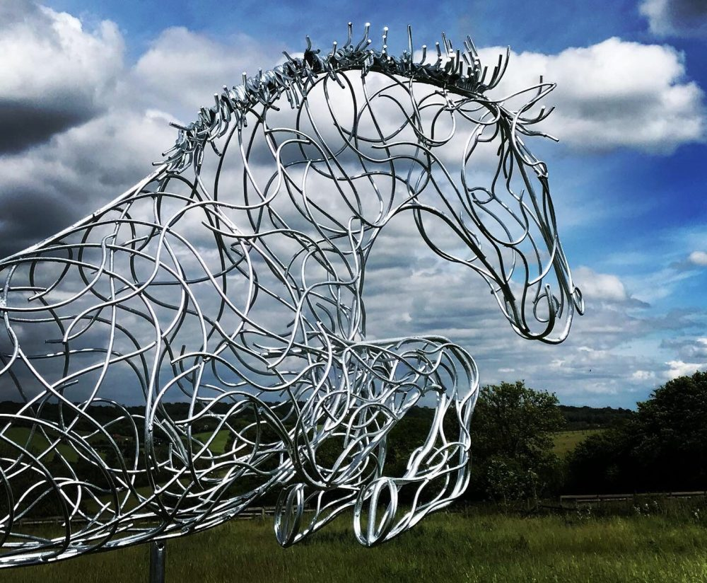 Head Of Blue Memory Jumping Horse