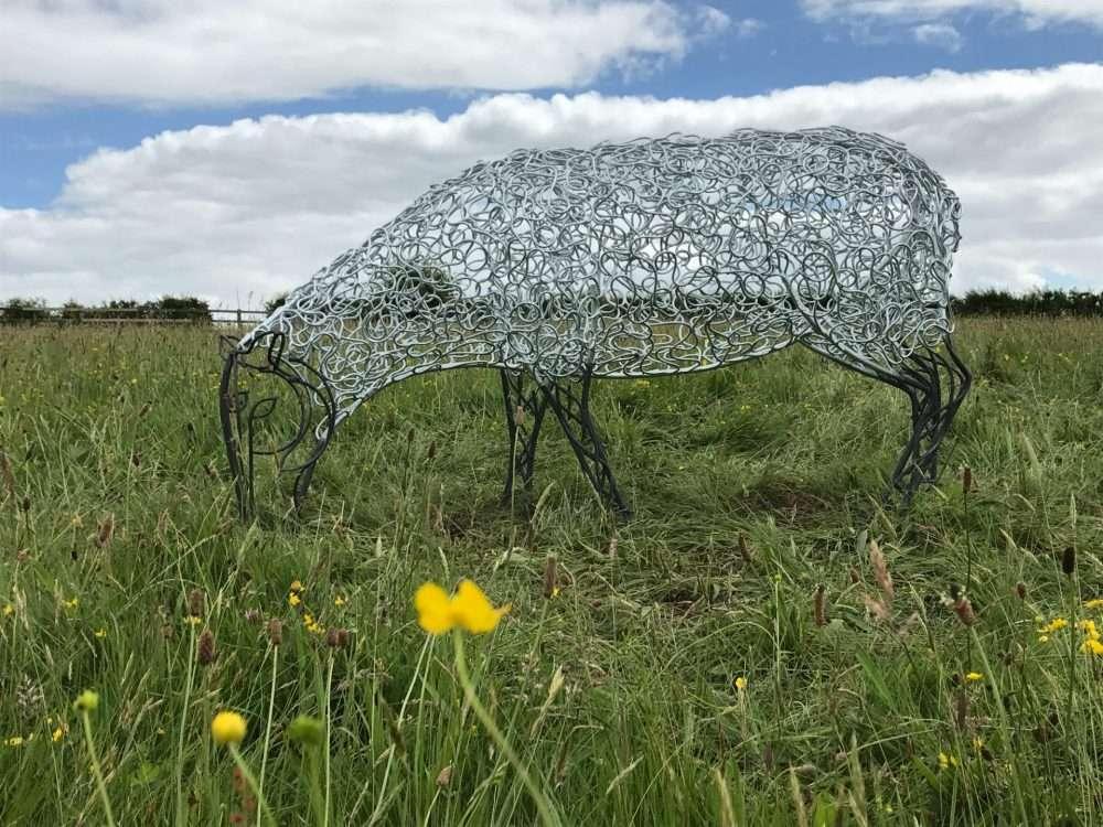 Sheep Sculpture In Buttercup Field