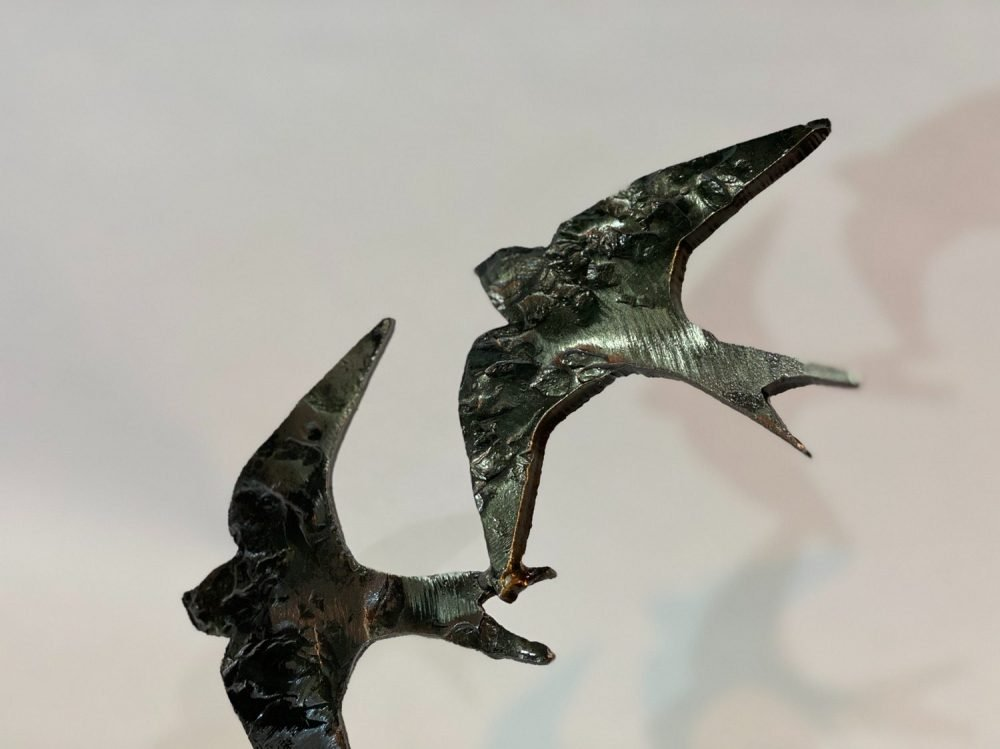 close up of Swifts in Flight