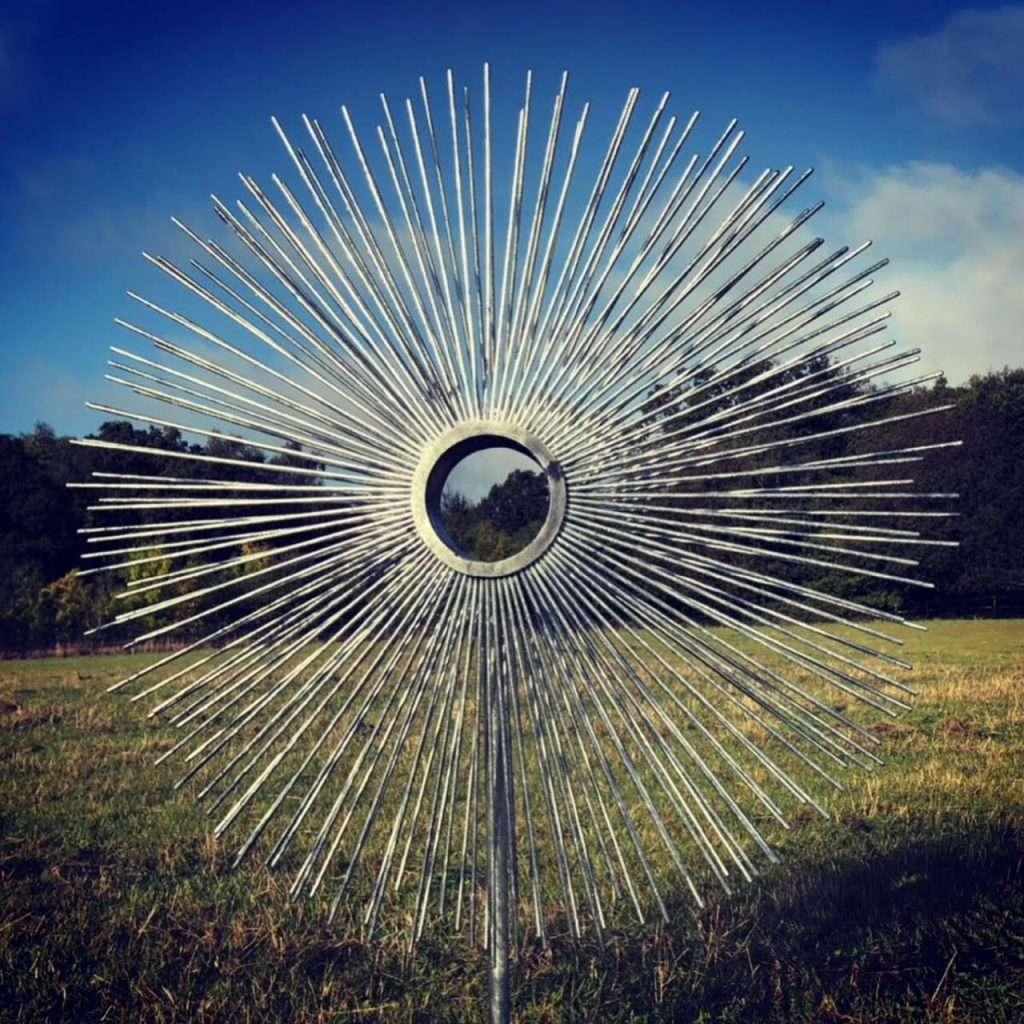 Small Eye Sculpture In A Field