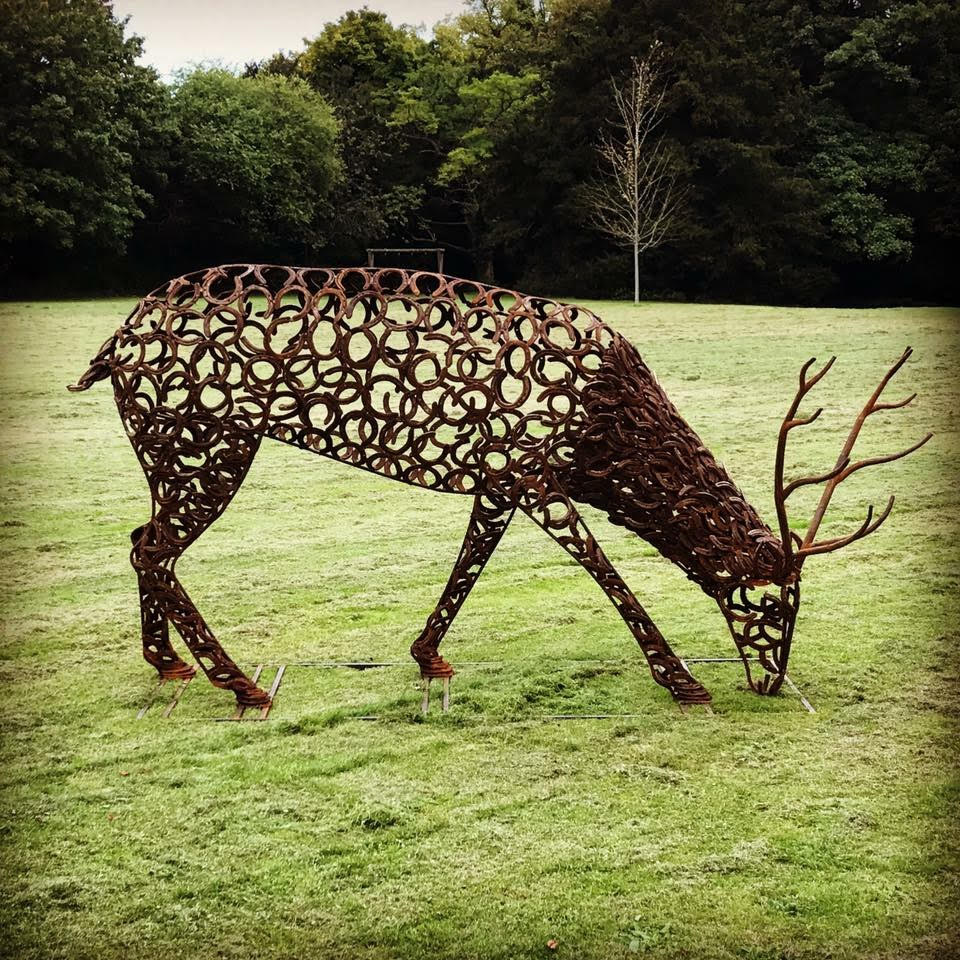 Horseshoe Stag With Antlers Eating Grass