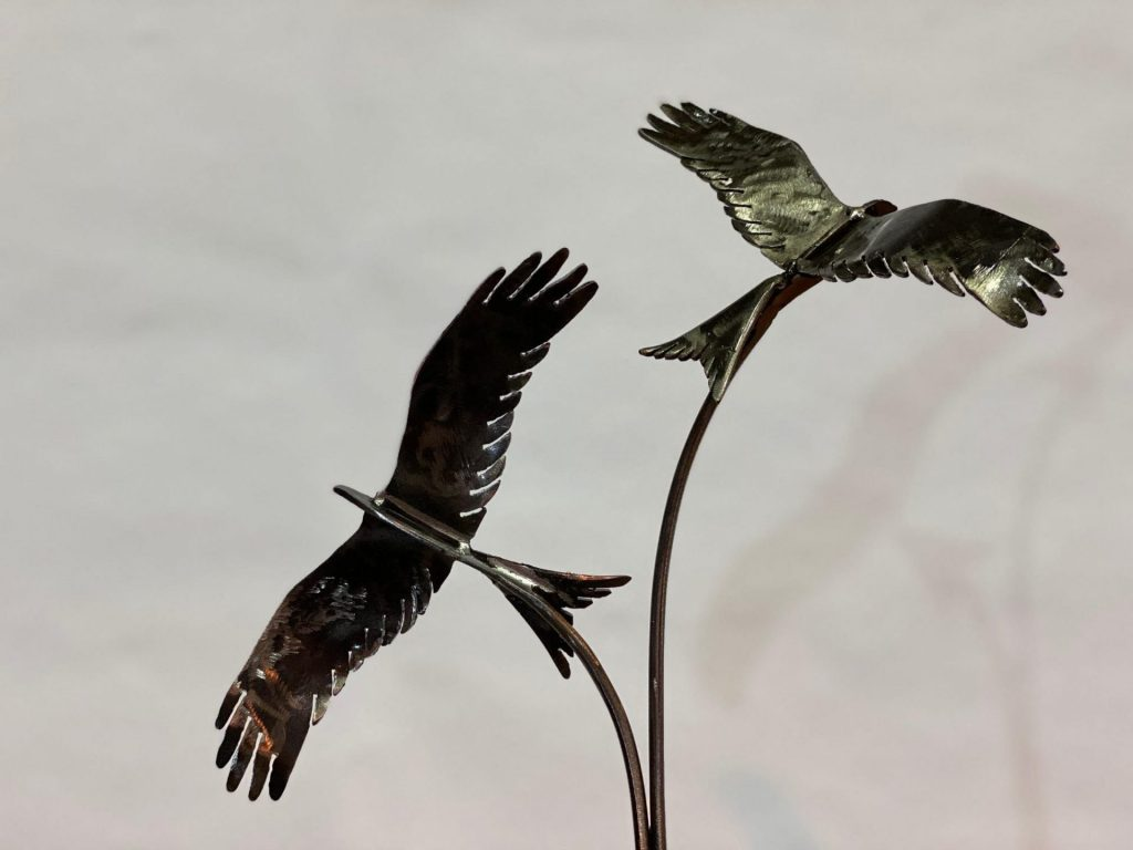 Zoomed In Two Birds