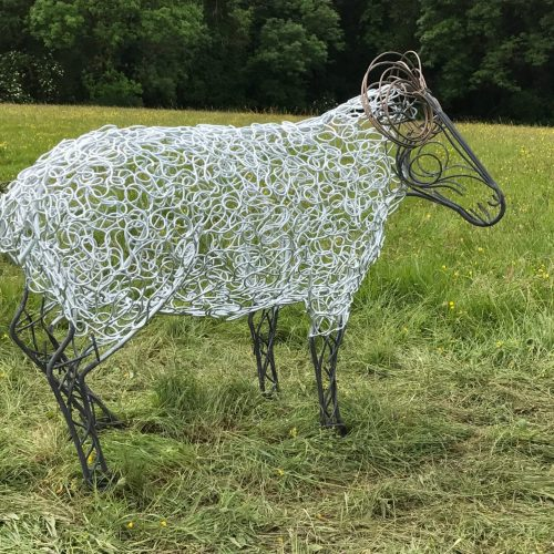 Ram Sheep With Bronze Horns