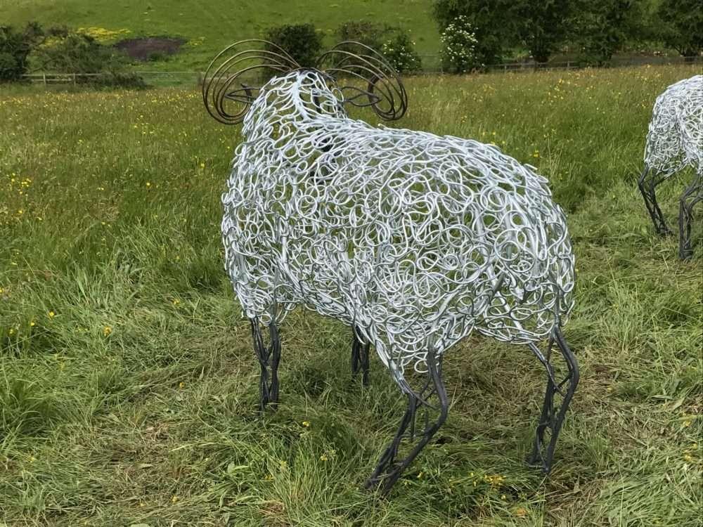 Back of Ram Sheep Sculpture With Golden Horns