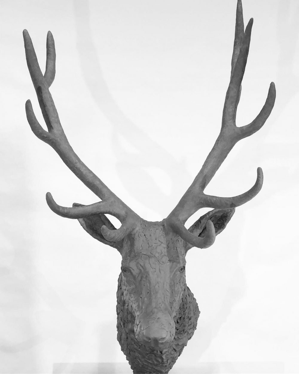 stag head sculpture front view