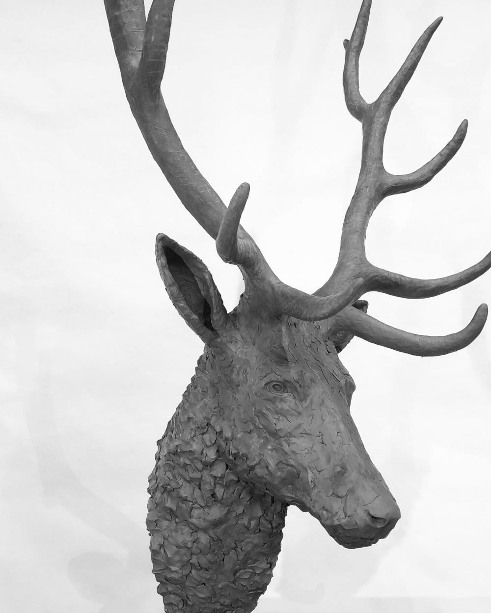 stag head sculpture front side view