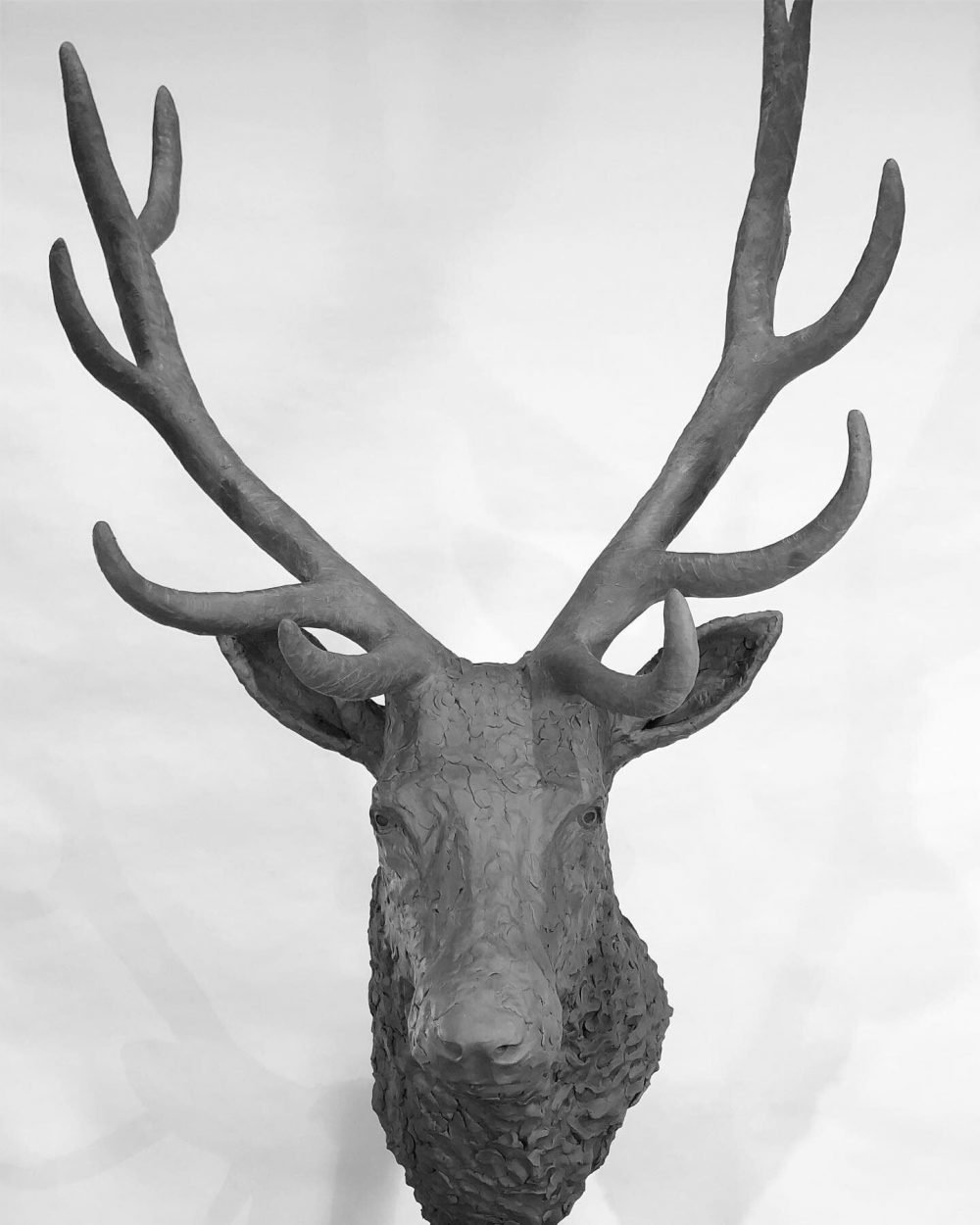 stag head sculpture head on view