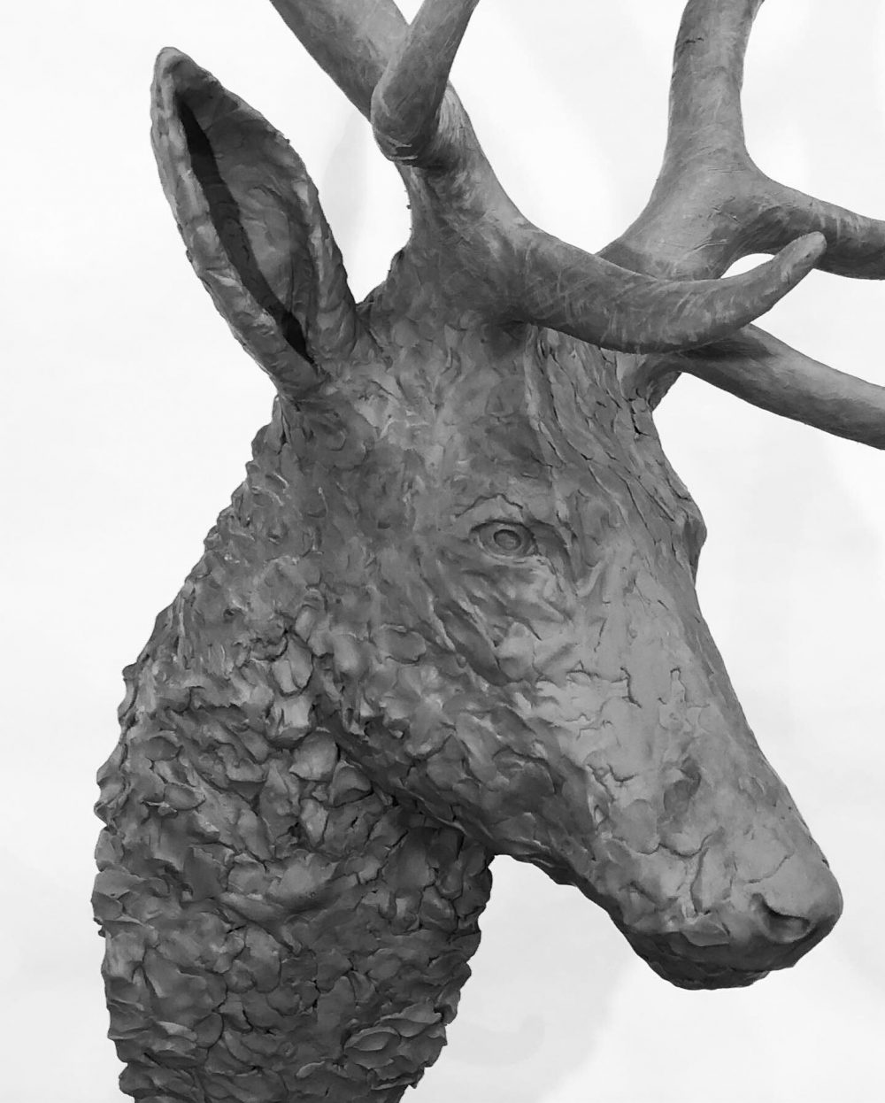 stag head sculpture close up view