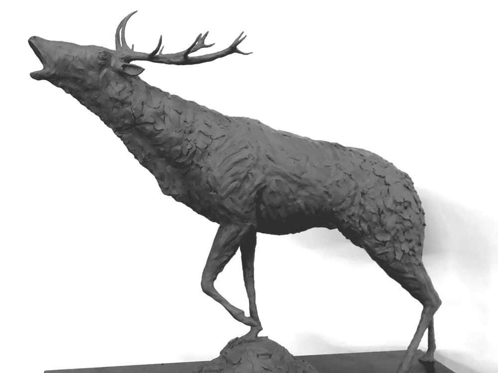 Stag Sculpture white background