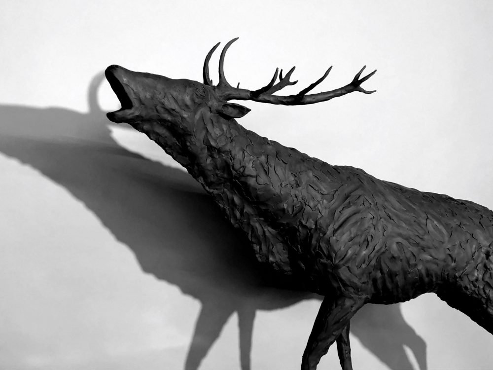 Stag Sculpture head close up